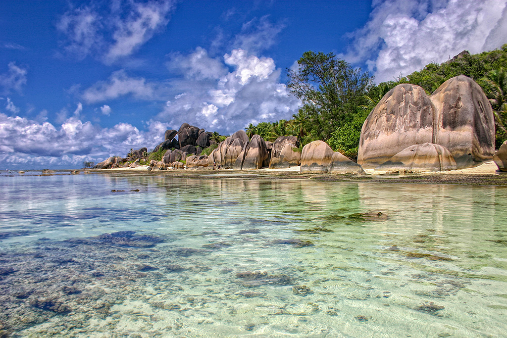 plage-paradisiaque-seychelles.jpg